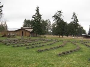 the-farm-march-2009-005